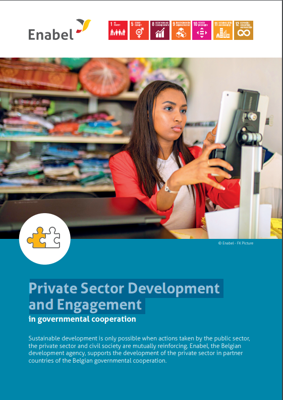 private_sector_development_picture.png